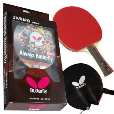 butterfly 401